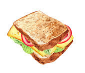Vegetarian sandwich hand drawn watercolor illustration