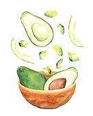 Whole and sliced avocado falling in bowl, flying in the air. Watercolor vegetable food