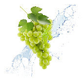 green grapes in water splash isolated on a white background