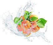 apricots in water splash isolated on a white background