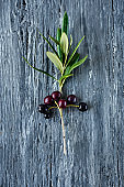 ripe arbequina olives from Catalonia, Spain