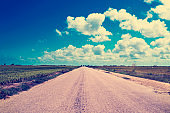 lonely road in the Ebro Delta, in Catalonia, Spain