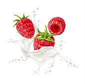 Vector 3d raspberry in milk splash realistic