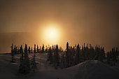 Beautiful winter Christmas trees forest with mountain landscape on frozen sunrise in Russia, Sheregesh