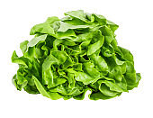 Lettuce isolated on white background with clipping path