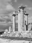 Ancient columns of temple of Aphaea in Aegina