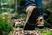Traveler hike through forest to peak of mountain.