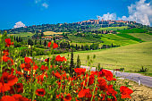 Beautiful Tuscany cityscape and blooming red poppy flowers, Pienza, Italy, Europe