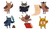 Academic owls set