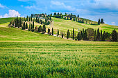 Typical winding rural road with cypresses in Tuscany, Italy