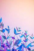 Light neon vertical background with leaves. Glowing abstract backdrop with shiny gradients on petals. Exotic floral branch with pink and blue vivid colors. Botanic twigs with beautiful illumination.
