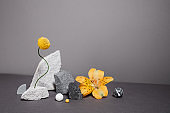 Creative and minimalistic staging of black and white stones, varied shapes and vibrant plants. Modern geometric and natural background with copy space. Trend colors - gray and yellow.
