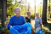 Senior women friends picking up litter outdoors in forest a plogging concept.