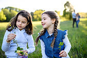 Portrait of two small girls standing outdoors in spring nature, picking flowers.