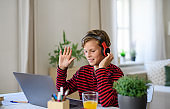 Schoolboy having online lesoon indoors at home, coronavirus concept.