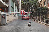 A boom barrier to private parking on a street in Tel Aviv, Israel