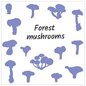 Set of contour mushrooms on a white background. Silhouettes of forest mushrooms for decoration and design. Vector badges.