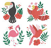 Vector set with cute compositions with exotic birds, leaves, flowers. Funny tropical animals and plants illustration for card design, poster or print. Jungle summer clip art for kids