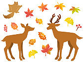 Illustration set of a pair of deer, flying squirrel, various autumn leaves