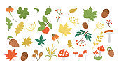 Vector set of cute autumn herbs, plants, flowers, berries. Flat style collection with leaves, apple, acorns, cones. Funny fall greenery illustration isolated on white background