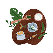 Flat lay natural cosmetics ingredients - plants, coconut. Top down view of homemade organic cosmetic. Hand made beauty products. Cosmetic made at home concept. Flat vector illustration.