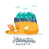 A cat on summer holiday illustration. A sleeping cat dreams of traveling to an exotic island. Mountains and trees on the back of the pet. Flat vector illustration with lettering Adventure awaits.