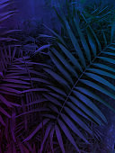 techno colors floral tropical party background, dark blue