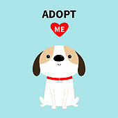 Adopt me. Dog sitting. Red collar. White puppy pooch. Cute cartoon kawaii funny baby character. Flat design style. Help homeless animal concept. Pet adoption. Blue background. Isolated.