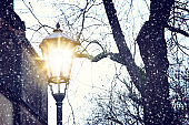 Vintage street lamp and bare trees at snowy winter twilight