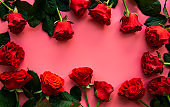 Red roses, concept of valentine day