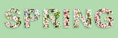 Word Spring with written from cherry blossom flowers on light green background. Natural white spring flowers inside the multi-colored letters.