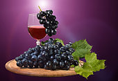 Blue, juicy grapes on a purple background.