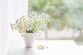 Bouquet of gentle camomile in white cup. Morning light in the room. Soft home decor,  vase with white flowers on  white wall background and on wooden table. Interior. Greeting card. Copy space.