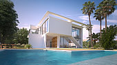 Modern villa with pool and exotic garden
