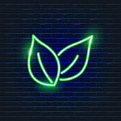 Leaf neon Icon. Ecology Vector trendy colored symbols. Eco concept. Glowing illustration for design.