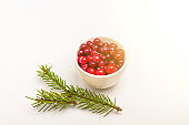 Ripe fresh cranberries in a bowl with pine branch isolated on white background. Winter healthy eating. Organic and vegetarian food contain vitamin c. Close up, copy space for text