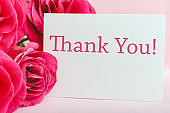 Thank you card in beautiful flowers bouquet of pink roses on pink background. White blank card with space for text, frame mockup for invitation. Spring festive flowers