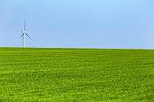 One wind turbine on green meadow in sunny day
