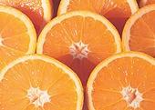 과일 오렌지 단면