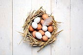 eggs in a tray