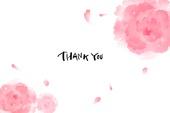 캘리그라피, 꽃, 감사