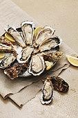 음식,음식재료,레몬,굴,해산물,날것