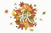 캘리그라피, 가을, 이벤트, 낙엽, 단풍잎