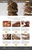 web template set
