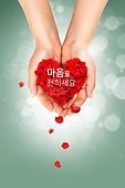 사랑, 기부, 나누기
