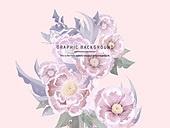 백그라운드, 꽃, 로맨틱