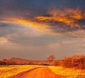 road in Kenya
