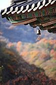 한국의 가을, 가을 여행, 처마, 윈드차임, 전통문화