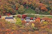 가을 내장산 풍경, 탑앵글