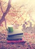 가을, 감성, 분위기, 풍경